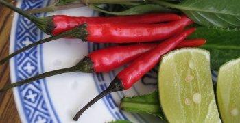 Thai Ingredient Substitutions