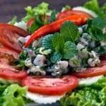 laos-meat-recipes-larb