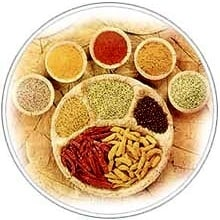 indian-seasoning