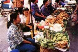 Chiangmai's Open Markets