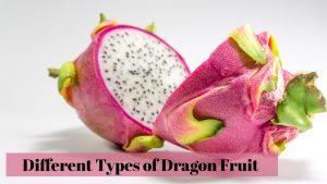 Types of Dragon Fruit