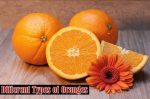 Types of Oranges